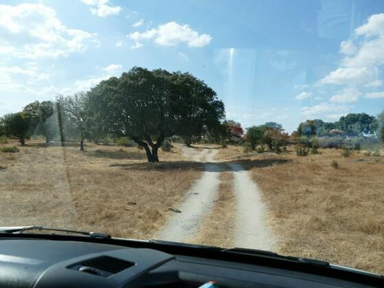 unterwegs im Alentejo zu einem Dolmengrab
